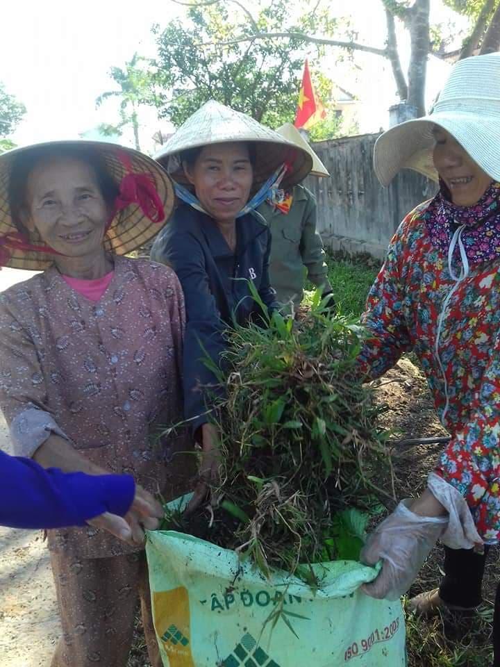 Chăm sóc hoa và làm vệ sinh đường xóm