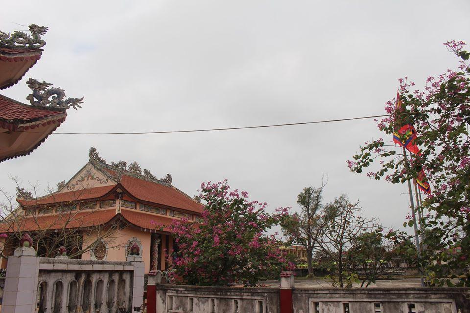 Hình ảnh Tết Canh Tý tại làng Cao Lao Hạ