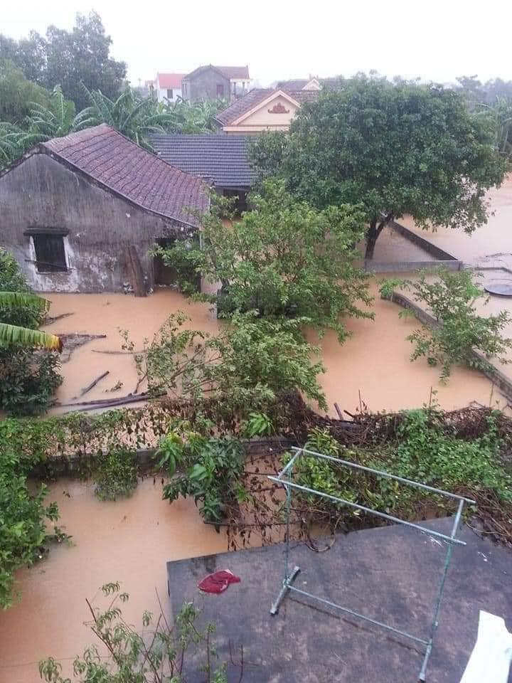 Mong Hạ Trạch hết lụt